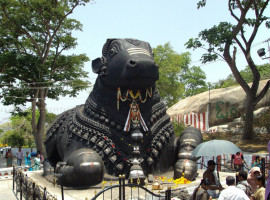 3N/4D Coorg & Mysore Tour Package with Flights From New Delhi
