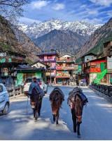 Splendid Himachal Trip