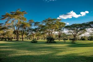 4N/5D Kenya Tour Package